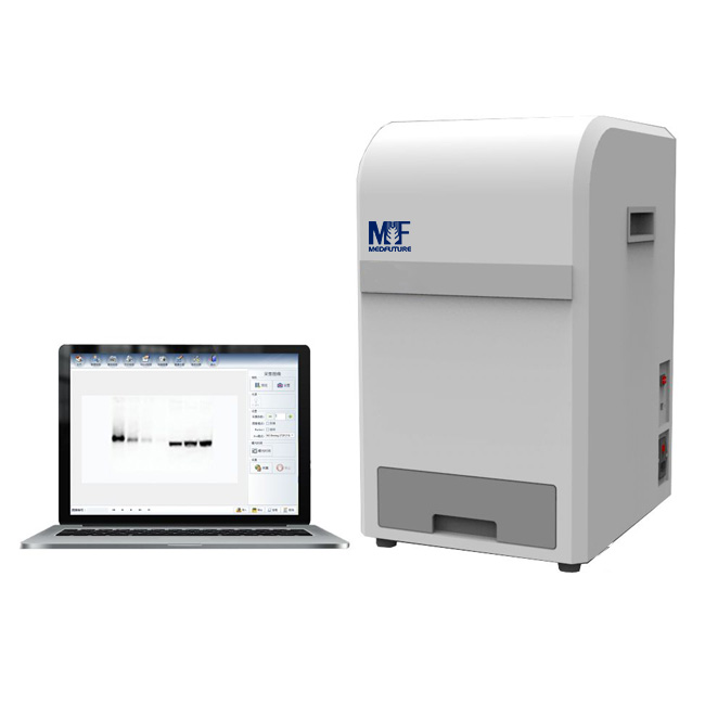 Chemiluminescence Imaging System
